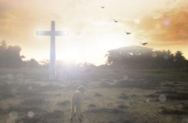 Najljepše obećanje u 23. Psalmu