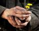 Put ostvarenja kršćanskog poslanja ostvaruje se u milosrđu!