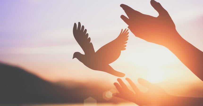 Molitvom ne mijenjamo Boga, nego nam molitva otvara srce za sve dobre stvari koje dolaze od Boga!