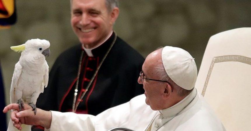 Papa Franjo: Isusova ljubav otvara vidike nade