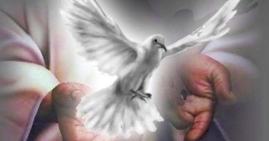 Moramo biti ujedinjeni u Duhu Svetom