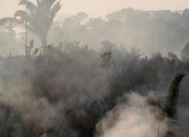 """Papa zabrinut za Amazoniju: """"Ta šumska pluća vitalna su za naš planet"""""""