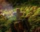 Ususret svetkovini Svih Svetih i Dušnom danu: Čistilište o kojem se vrlo malo zna