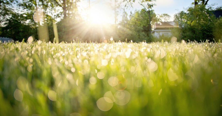Svako jutro miriše na novi početak, zašto ga uvijek iznova zaprljaš starim strahovima i sumnjama?