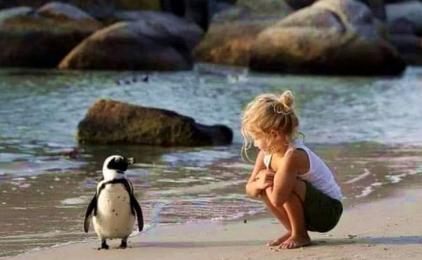 Luksuz života je čuvati mir kao najdragocjenije blago koje si dobio!