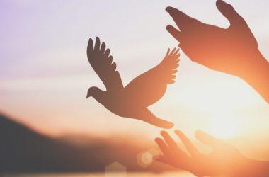 Molitva da u novoj godini Bog bude na prvom mjestu: Neka Božja svjetlo sja na vas, kroz vas i u vama